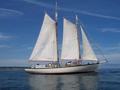 Thacher Island 2005 (Aug.16-31)