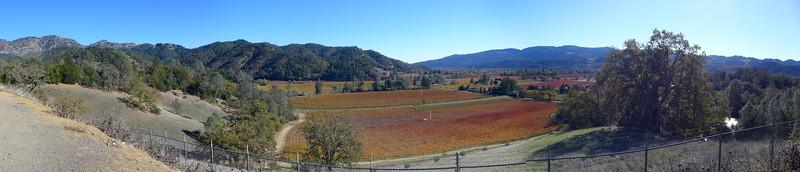 Overlook on Highway 29 near Calistoga.