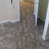 wet carpet, each step and you saw water shoot up
