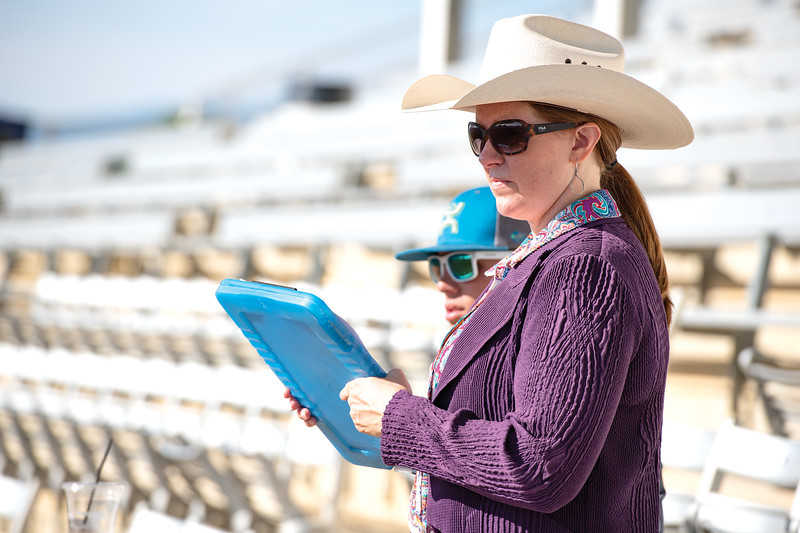 Matthew Gaston | The Sheridan Press<br>Lanae McDonald has her hands full judging the Working Cow Horse event at the 2019 Sheridan County Fair Wednesday, July 31, 2019.