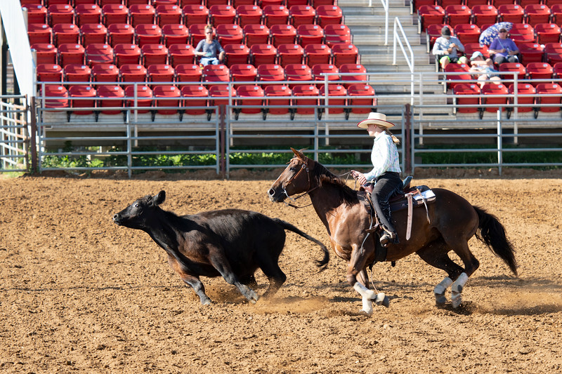 Matthew Gaston | The Sheridan Press<br>Mackenzie Wood demonstrates excellent horsemanship skills during the Working Cow Horse event at the 2019 Sheridan County Fair Wednesday, July 31, 2019.