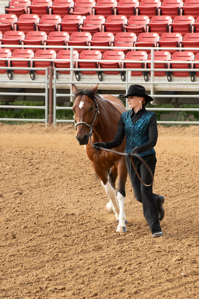 Matthew Gaston | The Sheridan Press<br>Lainey Konetzki jogs around the first turn with her horse at the Sheridan County Fair during the Senior Horse Showmanship competition Thursday, Aug. 1, 2019.