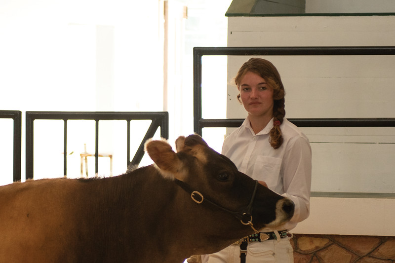 Matthew Gaston | The Sheridan Press<br>Josaphine Ankey receives high praise from Judge Lorelei Hallock for her heifer during the Intermediate Dairy Cattle Showmanship event Saturday, Aug. 3, 2019.