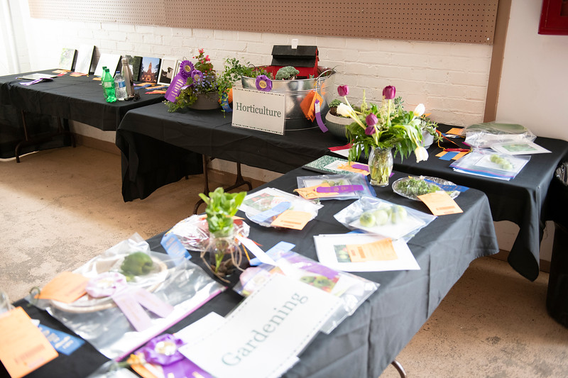 Matthew Gaston | The Sheridan Press<br>Samples of 4-H gardening and horticulture projects greet Sheridan County Fair goers as they enter the exhibit hall Tuesday, July 30, 2019.