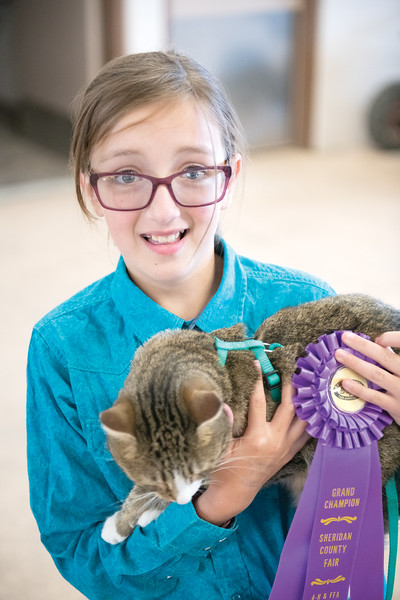 Matthew Gaston | The Sheridan Press<br>Kadia Miller, 11, took home the coveted purple ribbon for the 4-H Cat Show at the 2019 Sheridan County Fair Wednesday, July 31, 2019.