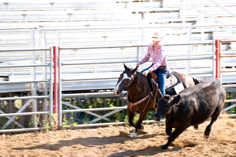 Matthew Gaston | The Sheridan Press<br>Lainey Konetzki and her horse Button strut their stuff during the Senior Working Cow Horse event at the 2019 Sheridan County Fair Wednesday, July 31, 2019.