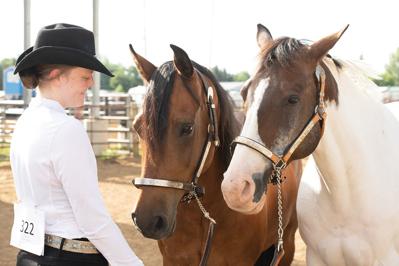 Matthew Gaston | The Sheridan Press<br>Casey Prior smiles at her horses after completeing the Senior Horse Showmanship event at the Sheridan County Fair Thursday, Aug. 1, 2019.
