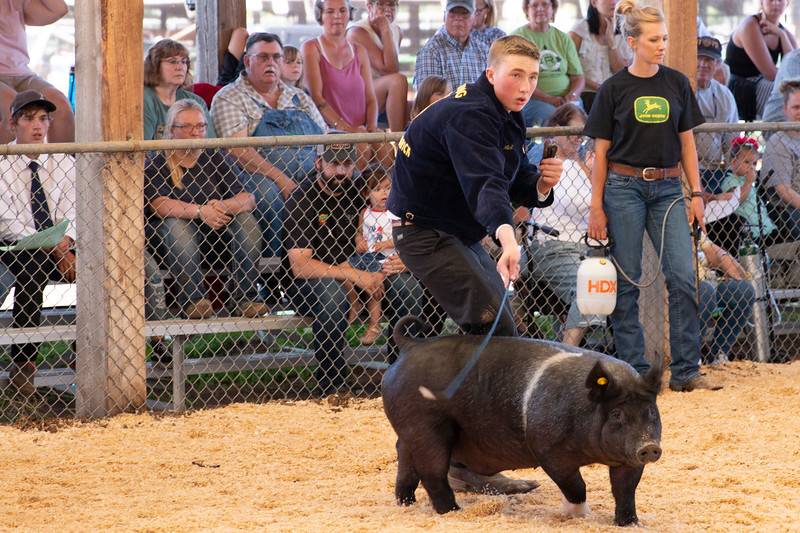 Matthew Gaston | The Sheridan Press<br>Braden West guides his pig around the show arena during the FFA Swine Showmanship event at the Sheridan County Fair Thursday, Aug. 1, 2019.