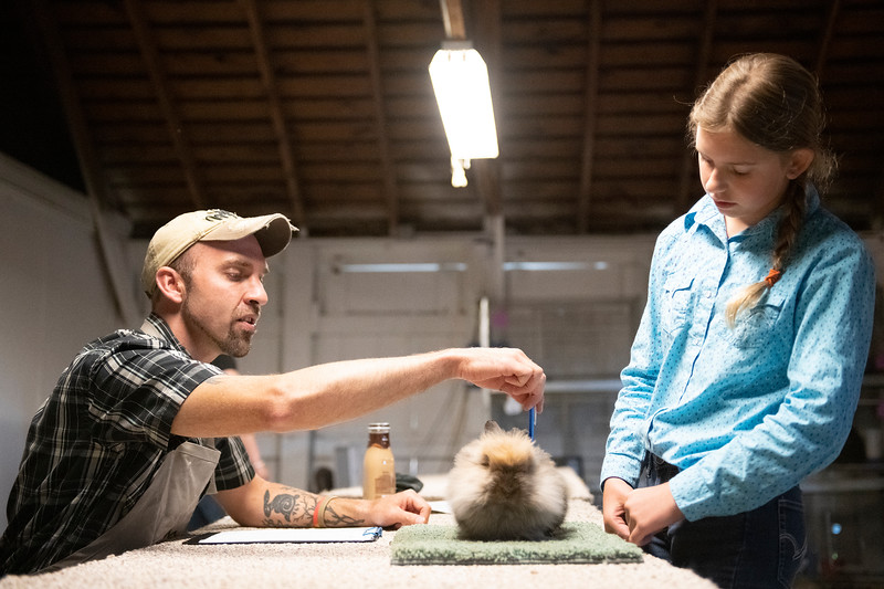 Matthew Gaston | The Sheridan Press<br>Judge Shaun Smith, left, points to a specific part of the rabbit that he would like competitor Izabell Hendricks to identify and describe at the Sheridan County Fair Friday, Aug. 2, 2019.
