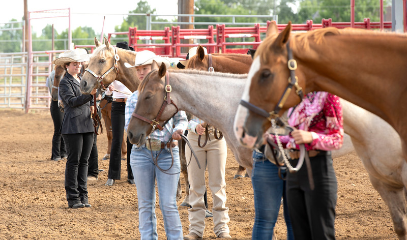 Matthew Gaston | The Sheridan Press<br>After strutting their stuff, the competitors in the Senior Horse Showmanship event line up in the arena to hear the judges decision at the Sheridan County Fair Thursday, Aug. 1, 2019.