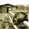 4 Eagle Ranch   05.16.2008