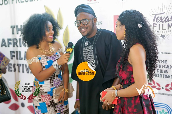 The African Film Festival 2016