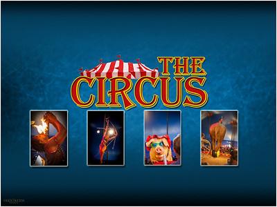 A collection of images from the circus show in Gibsonton FL.