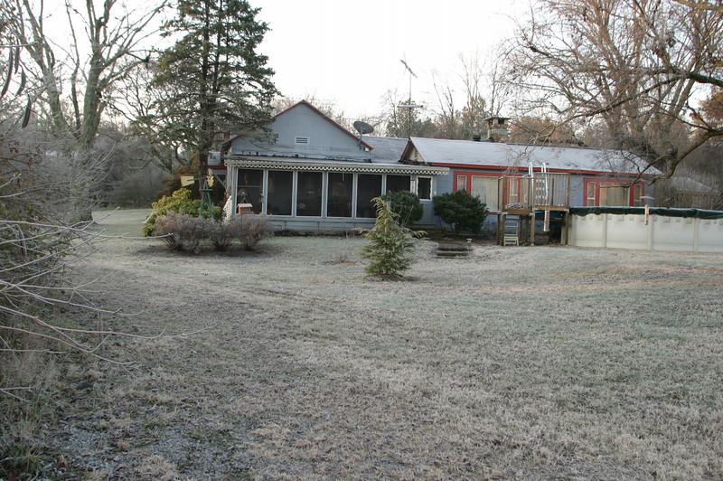 2008 winter heavy frost.Trees in yard
