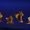 """""""Lionesses Dance"""" in THE LION KING National Tour - Copyright Disney - Photo by Joan Marcus"""