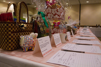NMSS-SilentAuction-4351