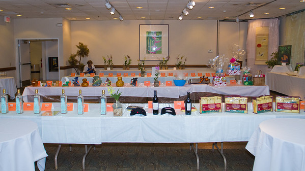 NMSS-SilentAuction-4355
