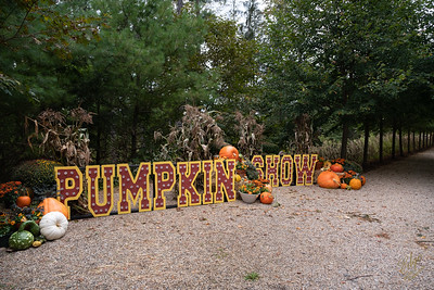 2021-Pumpkin Show-9
