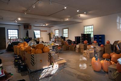 2021-Pumpkin Show-1