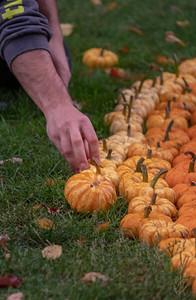 2019-Pumpkin Show-36