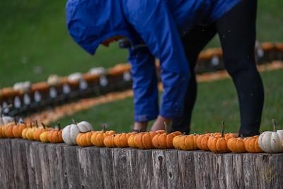 2019-Pumpkin Show-46