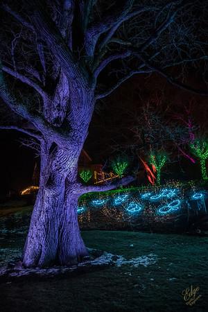 Winterlights