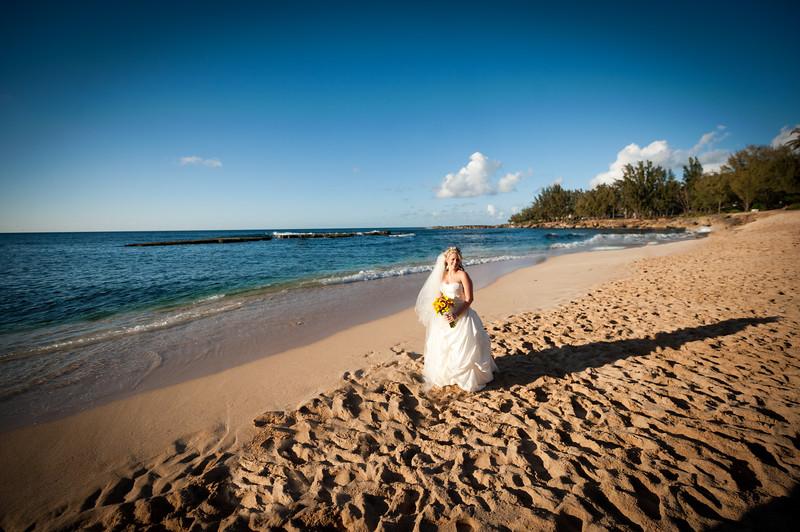James and Erica Hawaiian Wedding (85 of 173).jpg