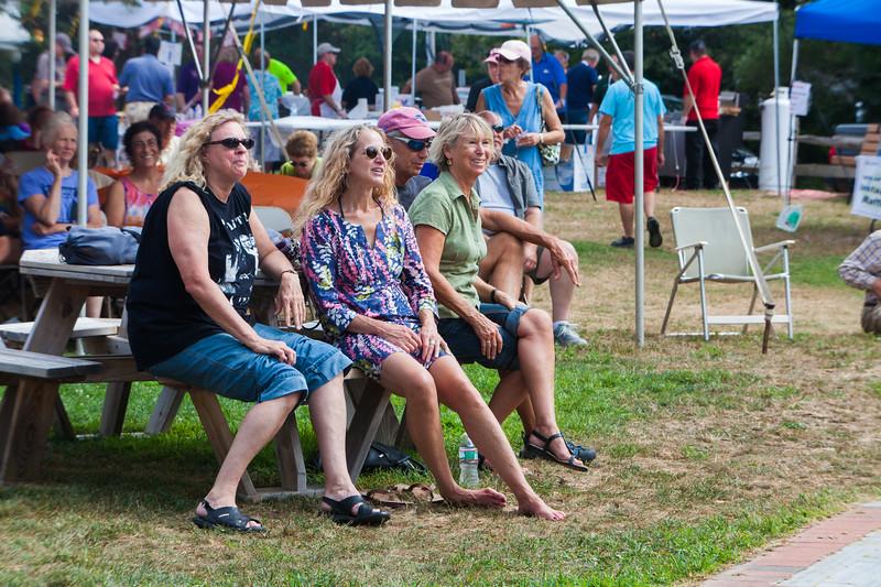 Windmill Festival