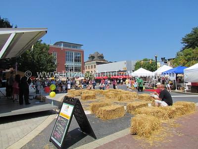 Tomato Festival 2011