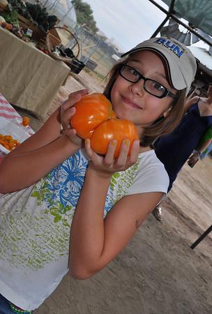 Quail Hollow Farm Tomato and Salsa Festival 2013