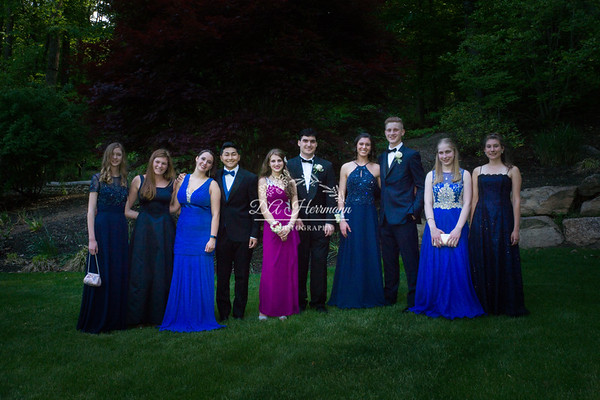 Tori's Pre-Prom Formal -- May 19, 2017