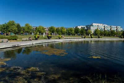 Woodbine Park Pond
