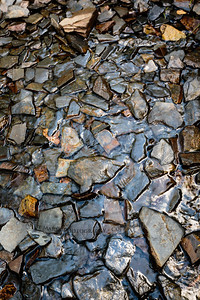 Slate in a tiny stream