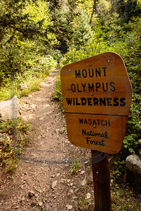 Mt. Olympus Wilderness Area