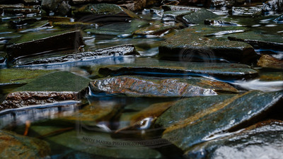 Slate tiles in a tiny stream
