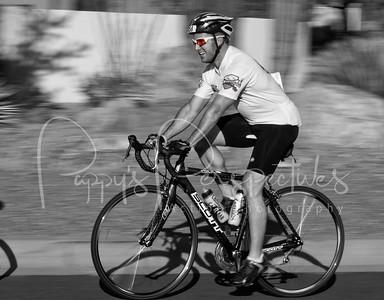 Tour of the Tucson Mountains 2012