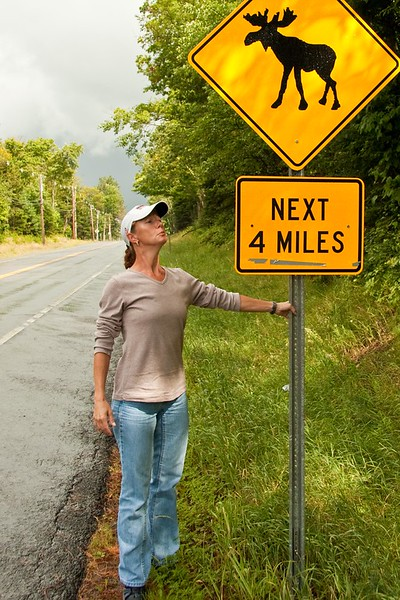 Vickie on her quest to see a moose. What better place than an official moose crossing.