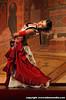Bal Dance Company
