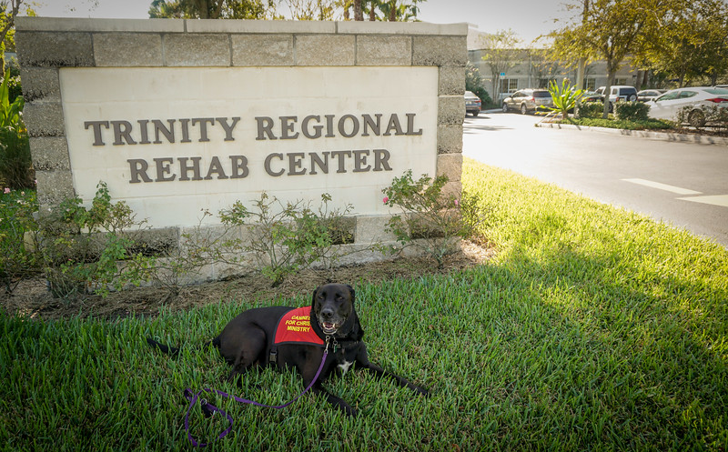 Trinity Rehab, DrLight visit, 11 1 2016