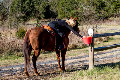 20171124 020 Black Friday Trail Ride and Scavenger Hunt
