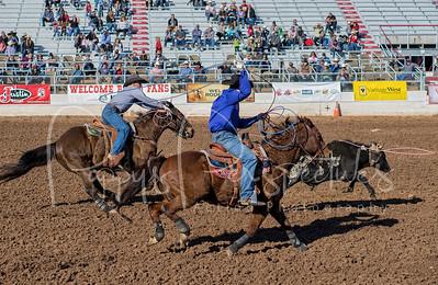 Tucson Rodeo 2017