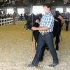 Don Knight | The Herald Bulletin<br /> Competitors in senior showmanship lead their animals around the show ring during the beef show at the 4-H Fair on Tuesday .