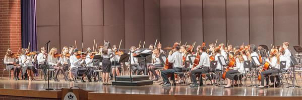 Orchestra Concert - Winter Benefit (2015)