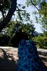 Tyler Arboretum1429