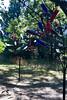 Tyler Arboretum1444