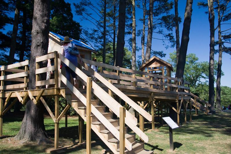 Tyler Arboretum1422