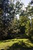 Tyler Arboretum1491
