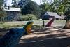 Tyler Arboretum1430