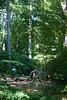 Tyler Arboretum1460