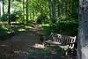 Tyler Arboretum1455